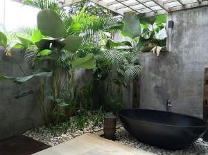 dzsungel_nyito